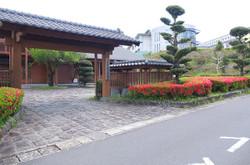 末吉町弓道場前のツツジが満開をむかえています。